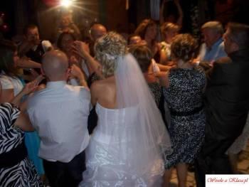 ELITE WESELE - Management Weddingowy, DJ na wesele Olsztyn