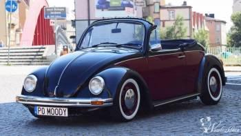 Auto do Ślubu Volkswagen Garbus Cabrio do wynajęci, Samochód, auto do ślubu, limuzyna Pogorzela