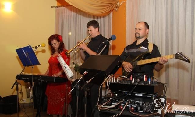 Ex Band, Ostrołęka - zdjęcie 1