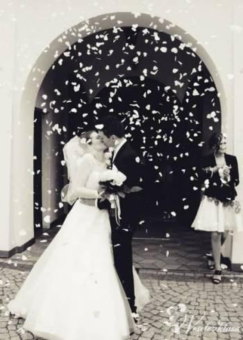 FILMOWANIE I FOTOGRAFIA ŚLUBNA, Kamerzysta na wesele Bytom