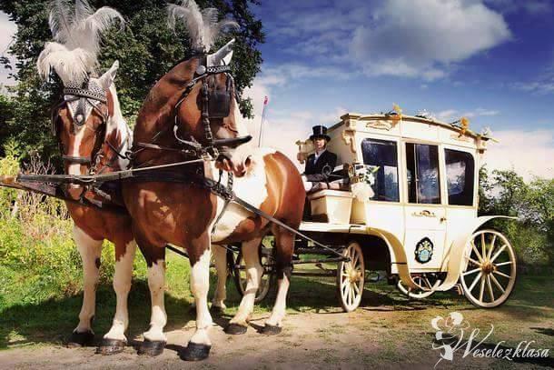 BRYCZKA, KARETA,Wozy,Amazonki do ślubu i okolicznościowe, Przodkowo - zdjęcie 1