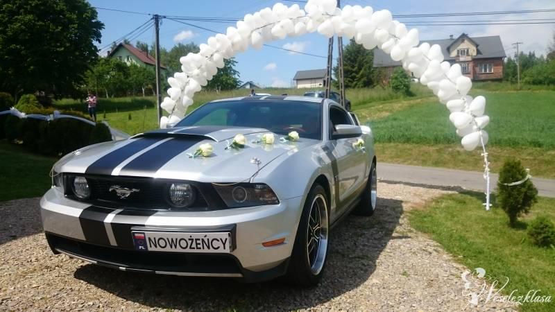 Ford Mustang GT V8 do ślubu, imprezy, Sosnowiec - zdjęcie 1