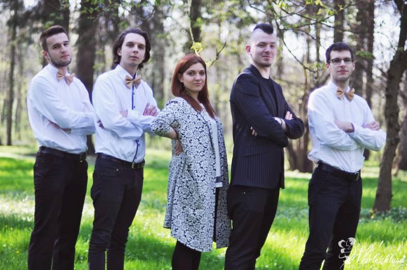 Daktylsi cover band, Katowice - zdjęcie 1