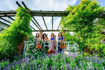 kwartet smyczkowy Simple Quartet, Oprawa muzyczna ślubu Dębica