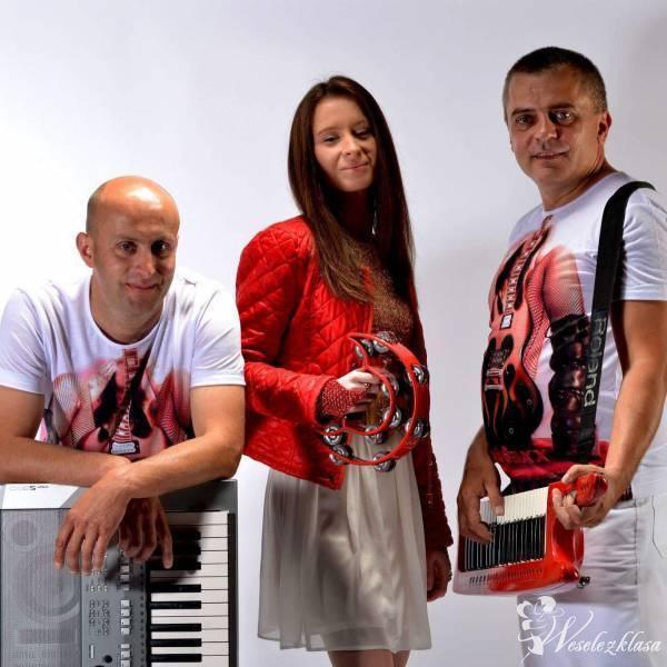 Zespół muzyczny Magnetic wesela  zabawy bale, Częstochowa - zdjęcie 1