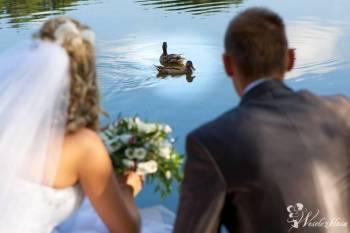 Twój film w Full HD! Profesjonalne wideofilmowanie, Kamerzysta na wesele Łazy