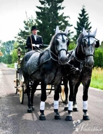 Powozem do ślubu i na inne okazje, Bryczka do ślubu Otwock