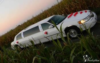 Białe długie Limuzyny Lincoln, Samochód, auto do ślubu, limuzyna Wągrowiec