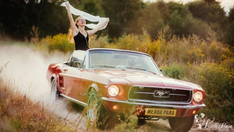 Mustangiem do Ślubu, Zamość - zdjęcie 1