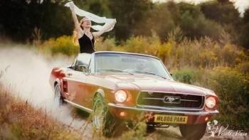 Mustangiem do Ślubu, Samochód, auto do ślubu, limuzyna Ostrów Lubelski