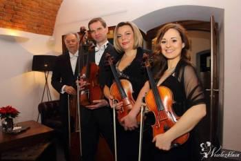 Kwartet Smyczkowy na Twoim ślubie! Angels'Voices!, Oprawa muzyczna ślubu Szczyrk