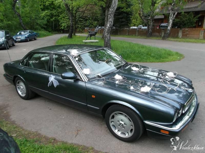 Królewski Jaguar dla wymagających, Wrocław - zdjęcie 1