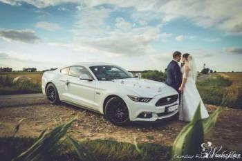 Najnowszy Mustang GT i Chevrolet Camaro do ślubu, Samochód, auto do ślubu, limuzyna Łask