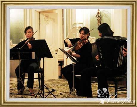 Mea Trio-profesjonalna oprawa muzyczna, Białystok - zdjęcie 1