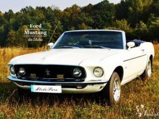 Kultowy Ford Mustang Cabrio 1969r do Ślubu, Samochód, auto do ślubu, limuzyna Nowy Wiśnicz