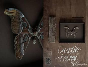 Prezent dla Rodziców Dekoracje Prawdziwe Motyle, Prezenty ślubne Wojcieszów