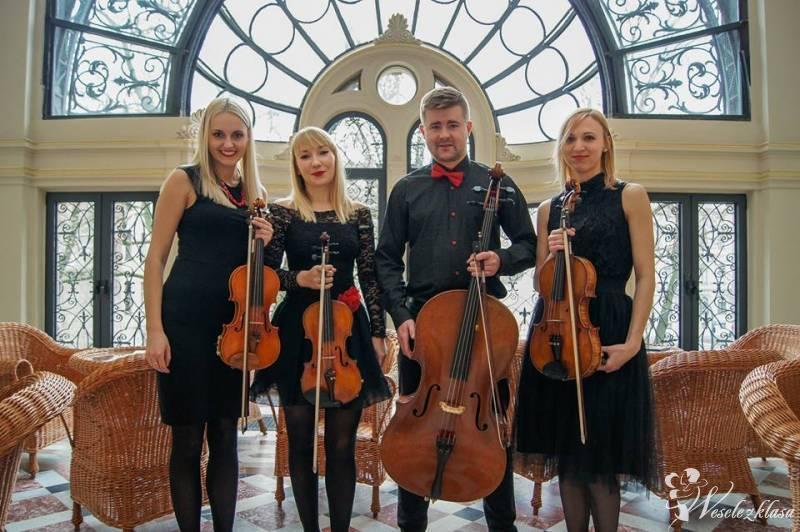 Kwartet Smyczkowy Charisma, oprawa muzyczna ślubów oraz uroczystości, Łódź - zdjęcie 1