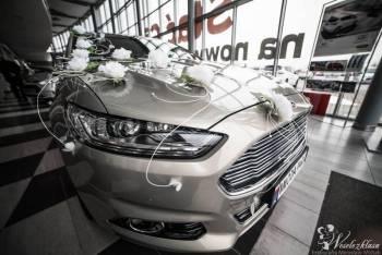 Ford Mondeo Titanium 2016 Samochód do ślubu i nie tylko, Samochód, auto do ślubu, limuzyna Wiązów