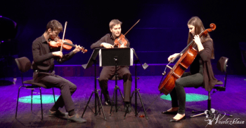 Trio smyczkowe Vivace, Oprawa muzyczna ślubu Chełmek