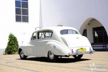samochod do slubu, Samochód, auto do ślubu, limuzyna Gniewkowo