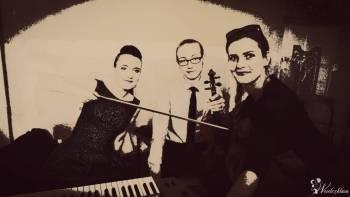 Oprawa muzyczna Passion Trio- śluby, komunie, jubileusze, uroczystości, Oprawa muzyczna ślubu Wodzisław Śląski