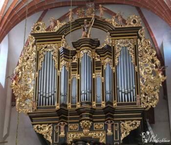 organy, skrzypce - Ave Maria, Marsz weselny i inne, Oprawa muzyczna ślubu Kozienice