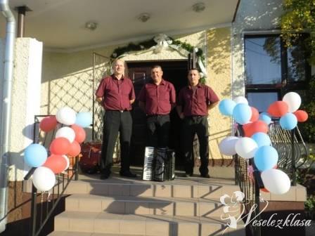 Zespół muzyczny Vokall, Kielce - zdjęcie 1