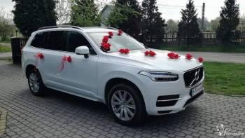 Auto do ślubu VOLVO PERŁA, Samochód, auto do ślubu, limuzyna Mniów