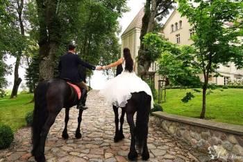 Pałac Pacółtowo - wynajem na wyłączność, Sale weselne Pasym