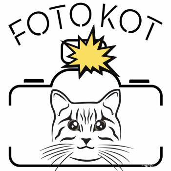 Fotobudka FotoKot - Idealne rozwiązanie na każdą impreze !, Fotobudka, videobudka na wesele Ustroń