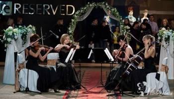 Kwartet Smyczkowy Brindisi, Oprawa muzyczna ślubu Hajnówka