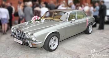 Wyjątkowa okazja - wyjątkowe auto! JAGUAR XJ II, Samochód, auto do ślubu, limuzyna Lubomierz