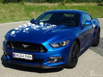 Mustangiem GT 2017 do Ślubu i na inne okazje!, Samochód, auto do ślubu, limuzyna Goleniów