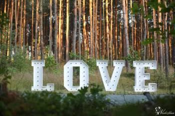 Napis LOVE  na wesele wynajem - duże litery 3D świecące!, Napis Love Ogrodzieniec