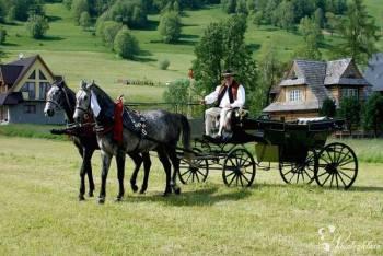 Wesele  - przewóz landem - organizacja, Bryczka do ślubu Zakopane