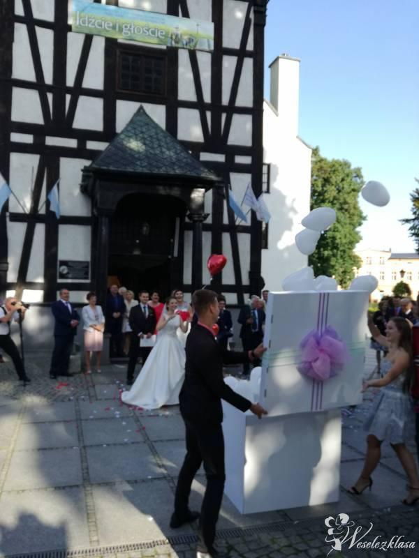 Balony z helem, pudło prezentowe na impreze np; wesele , urodziny itp., Milicz - zdjęcie 1