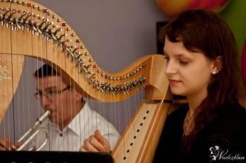 Joanna Kamińska - harfa, Oprawa muzyczna ślubu Przasnysz