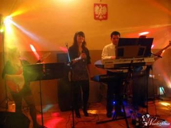 zespół muzyczny Live Music, Zespoły weselne Ulanów