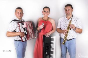 Zespół muzyczny LUXUS, Zespoły weselne Witkowo