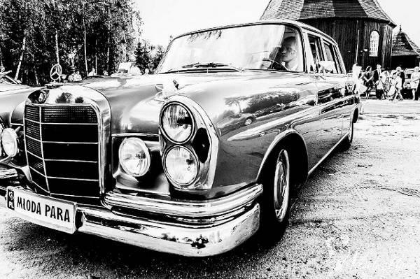 Zabytkowy Mercedes Skrzydlak do ślubu z 1964r, Turek - zdjęcie 1