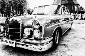 Zabytkowy Mercedes Skrzydlak do ślubu z 1964r, Samochód, auto do ślubu, limuzyna Międzychód