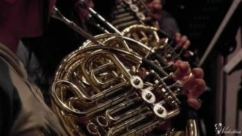 Wyjątkowa oprawa muzyczna ślubu - waltornia lub trąbka + organy, Oprawa muzyczna ślubu Gliwice