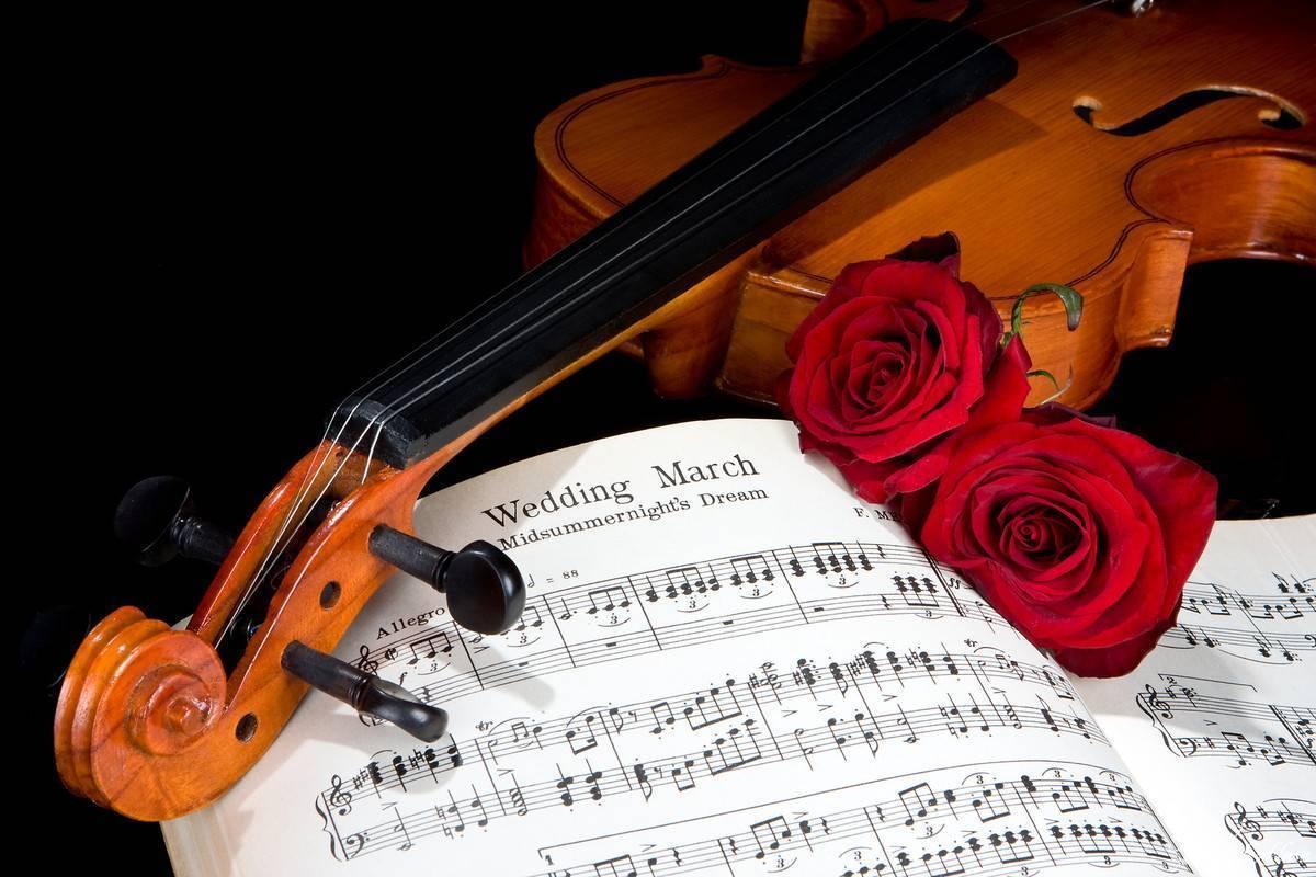 Oprawa muzyczna ślubu skrzypce, Gdańsk - zdjęcie 1