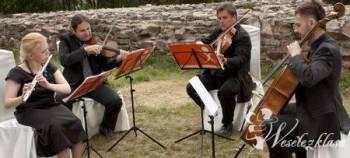 Kwartet Demi Sec - oprawa muzyczna ślubów, bankiet, Oprawa muzyczna ślubu Miasteczko Śląskie