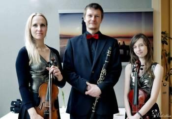 Trio Wave - oprawa muzyczna ślubów i uroczystości., Oprawa muzyczna ślubu Czarna Woda