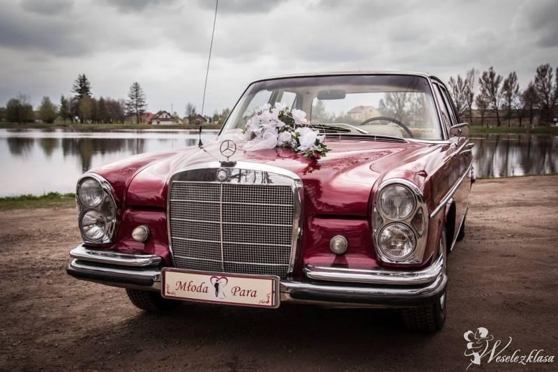 Zabytkowa Limuzyna Mercedes W108 1966r, Pajęczno - zdjęcie 1