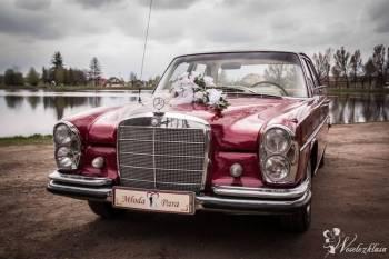 Zabytkowa Limuzyna Mercedes W108 1966r, Samochód, auto do ślubu, limuzyna Radomsko