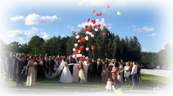 Wypuszczanie balonów z helem ~ Pudło z balonami ~ Pudło niespodzianka, Balony, bańki mydlane Zielona Góra