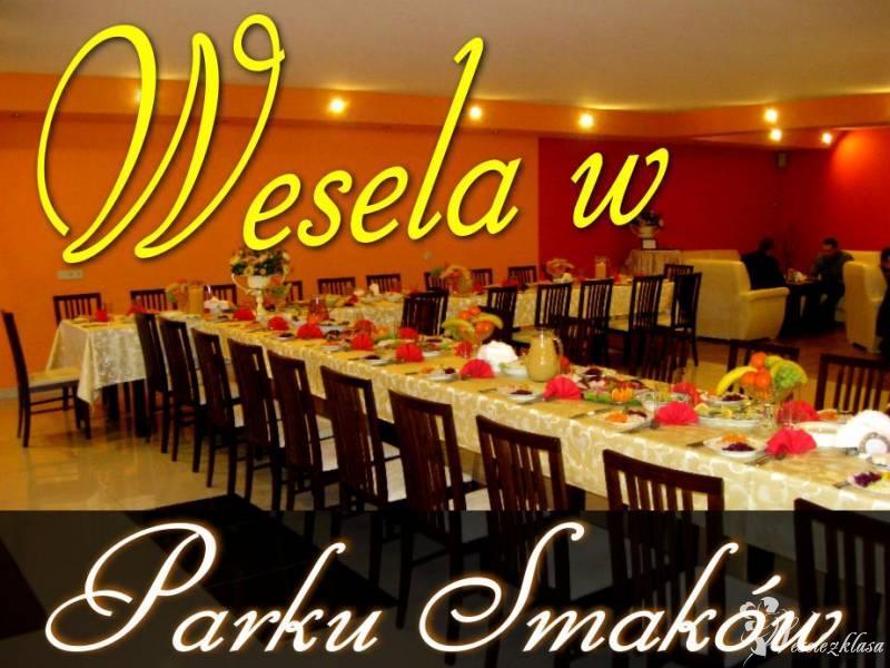 Sala na wesela  - Restauracja Park Smaków, Szczawno-Zdrój - zdjęcie 1