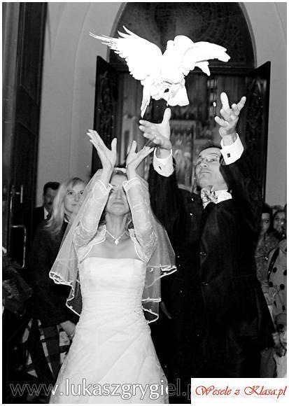 Fotografia ślubna - profesjonalnie, Częstochowa - zdjęcie 1